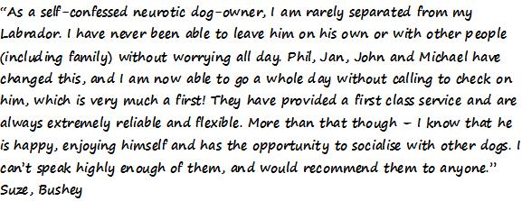 dog boarding testimony